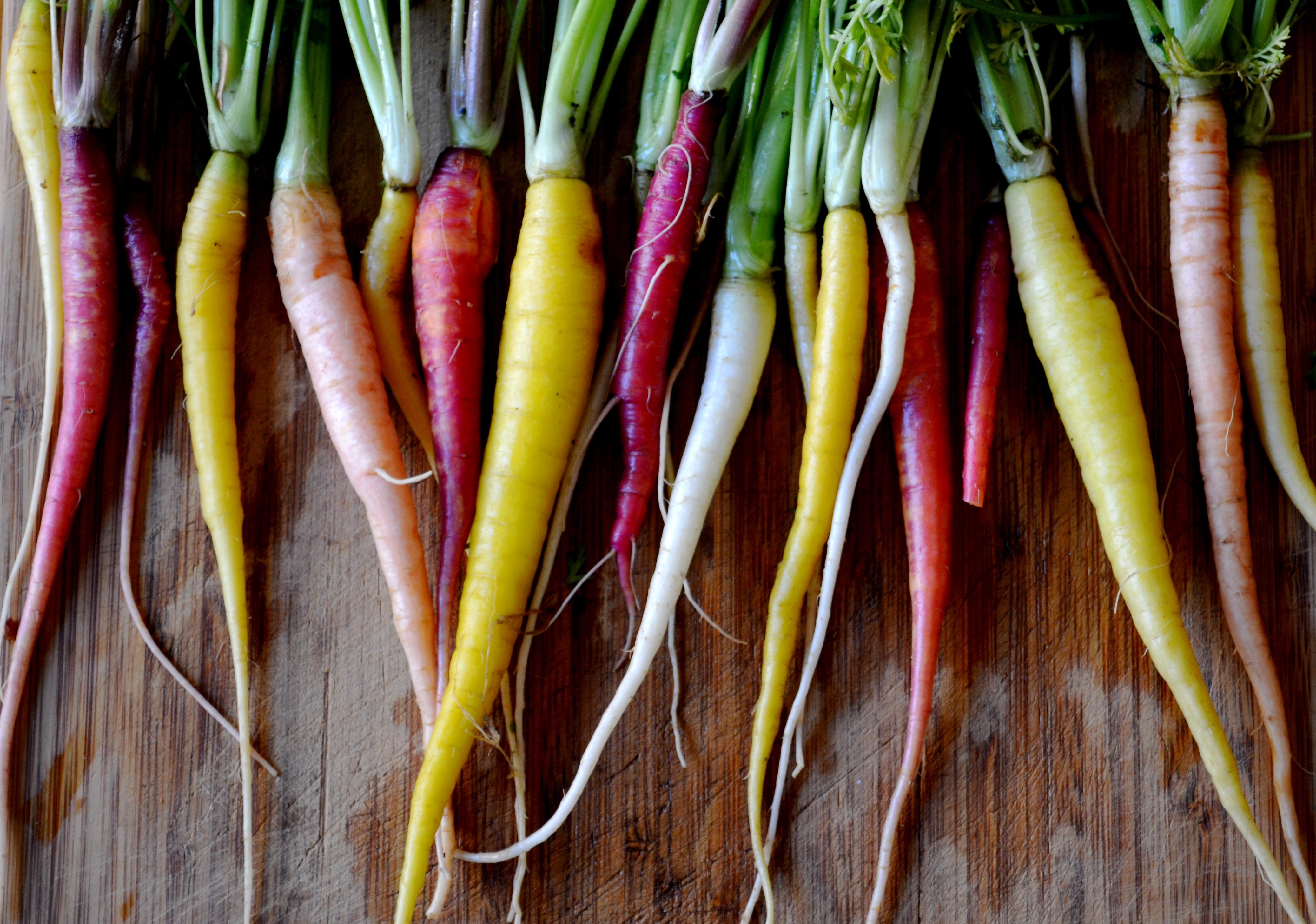 Roasted Spring Vegetables Big Eats Tiny Kitchen