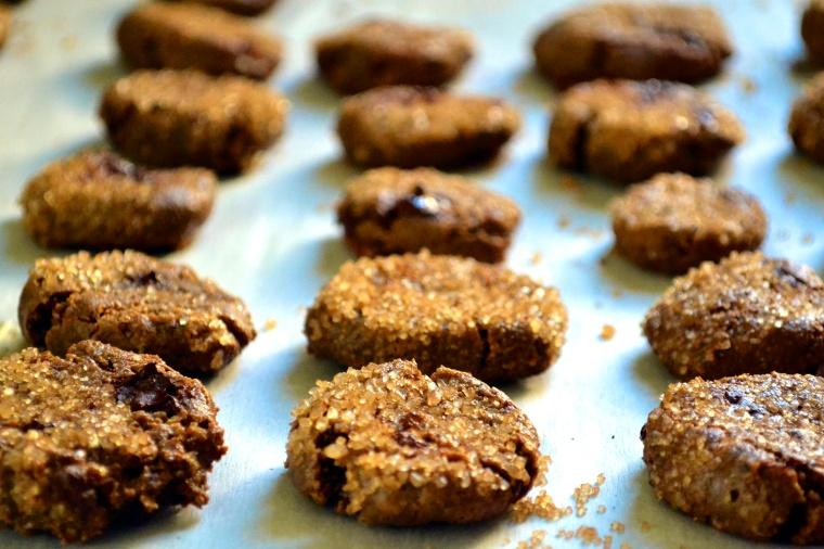 Grain Free Ginger Chocolate Chip_04